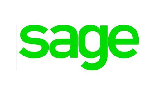 SAGE.. Solides performances au premier semestre grâce à l'exécution  continue du plan stratégique - BTP News